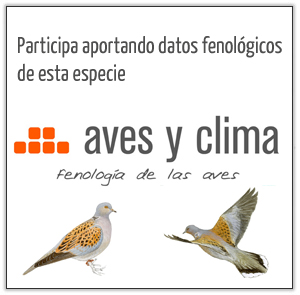 aves-y-clima