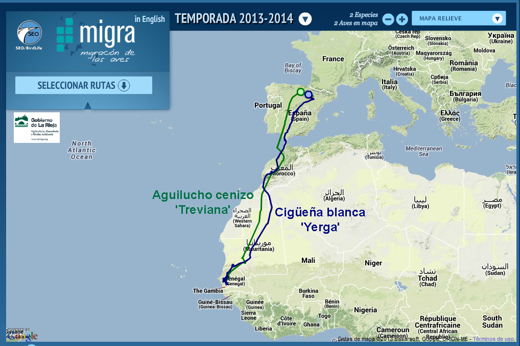 Migración de Yerga y del ejemplar llamado Treviana