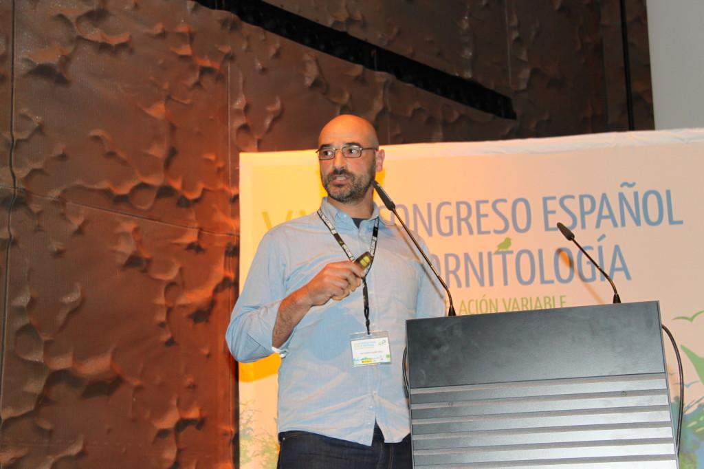 Ponente: Juan A. Fargallo