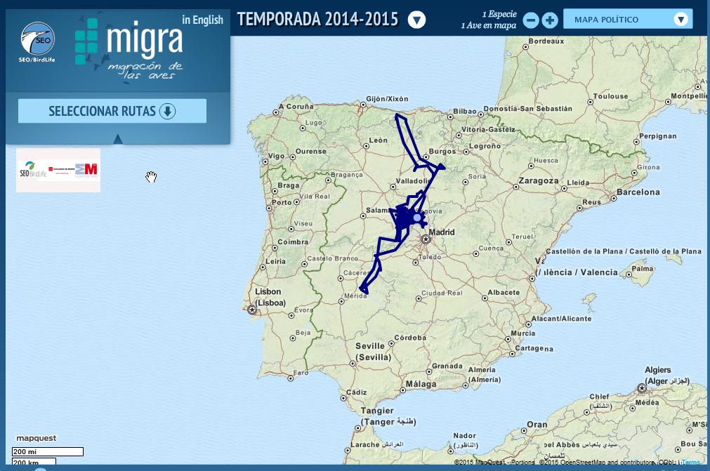 Movimientos de Risco en España