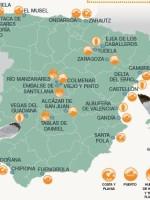 mapa gaviotas 2