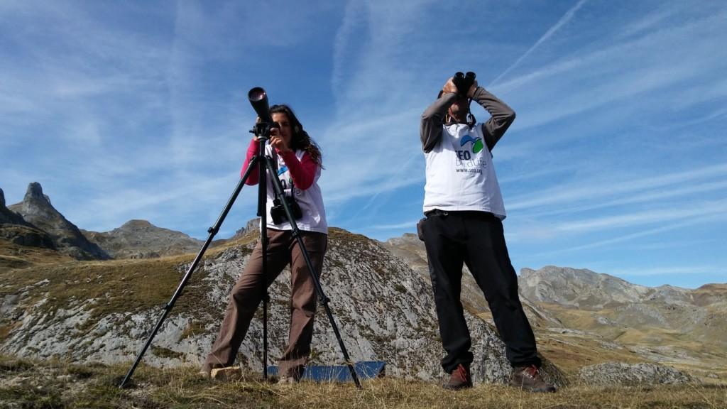 Volunarios del Proyecto Lindus-2 en el Pirineo durante el seguimiento de la migración de aves. ©SEO/BirdLife
