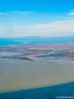 Carlos Montserrat Pepiol Campanya pels Sediments Delta del Ebro