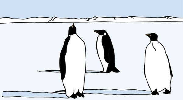 penguins-46704_640