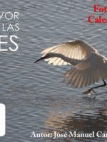 Concurso_Canarias_2017