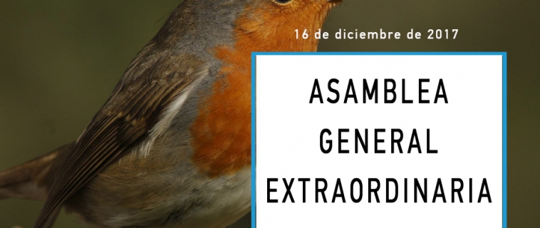 Convocatoria de Asamblea General Extraordinaria