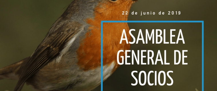 Convocatoria Asamblea General Ordinaria de SEO/BirdLife. Junio de 2020